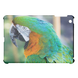 Colorful Parrot iPad Case