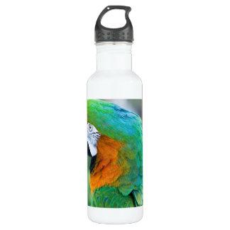 Colorful Parrot Pet Bowl 24oz Water Bottle