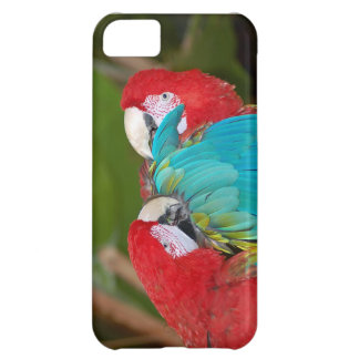 Colorful parrot print iphone case cover