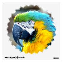 Colorful Parrot - Wall Decal