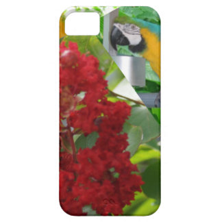 Colorful parrots enjoy looking at each other iPhone SE/5/5s case