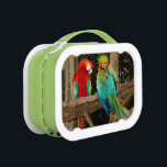 """Colorful Parrots Macaws Lunch Box<br><div class=""""desc"""">Two photographs of colorful Macaw Parrots,  displayed on both sides of a Lunch Box.</div>"""