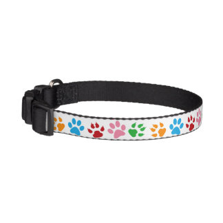 Colorful paw prints cute stylish dog's collar