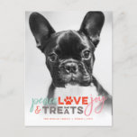 Colorful Peace Love Joy Treats Dog Lover Photo Pet Holiday Postcard