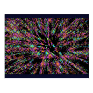 Colorful Peacock Abstract Postcard