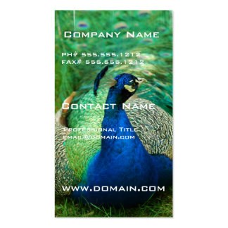 Colorful Peacock Business Card