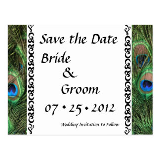 Colorful Peacock Eyes Wedding Save the Date Postcard