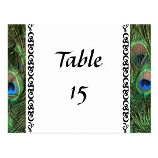 Colorful Peacock Eyes Wedding Table Numbers Postcard