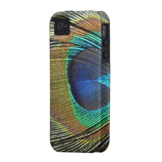 COLORFUL PEACOCK FEATHER iPhone 4 CASES