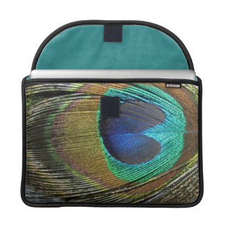 COLORFUL PEACOCK FEATHER SLEEVE FOR MacBook PRO