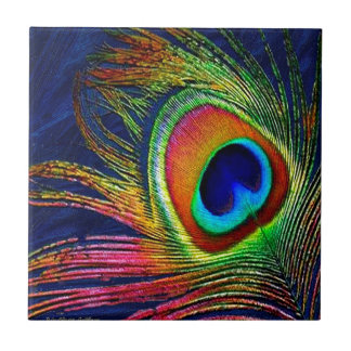 Colorful Peacock Feather Print Tile