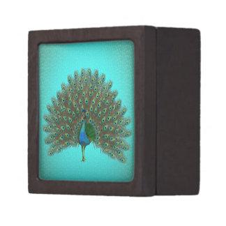 Colorful peacock jewelry box