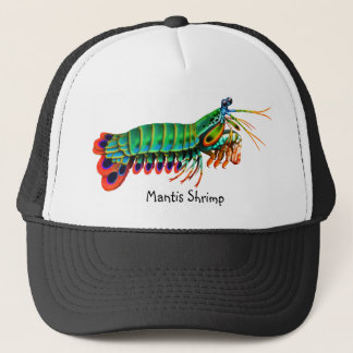 Colorful Peacock Mantis Shrimp Hat