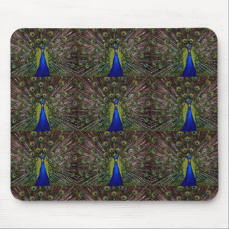 Colorful Peacock Mouse Pad