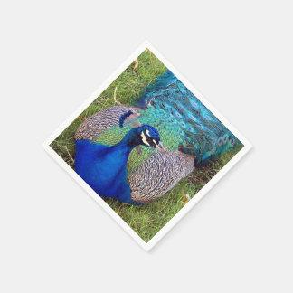 Colorful Peacock Paper Napkin