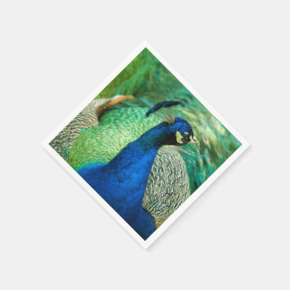Colorful Peacock Paper Napkins
