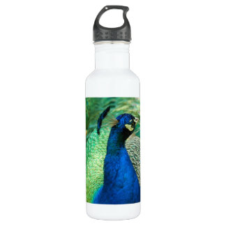 Colorful Peacock 24oz Water Bottle