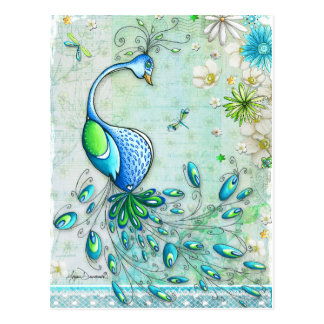 Colorful Peacock Postcard