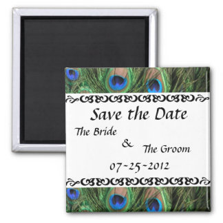 Colorful Peacock Save the Date 2 Inch Square Magnet