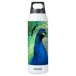 Colorful Peacock SIGG Thermo 0.5L Insulated Bottle