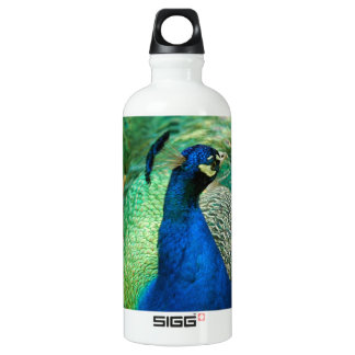 Colorful Peacock SIGG Traveler 0.6L Water Bottle