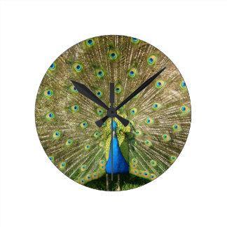 Colorful Peacock Wall Clock