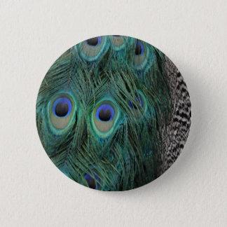 Colorful Peafowl Decor Pinback Button