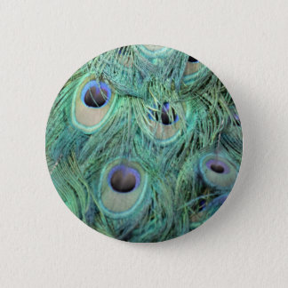 Colorful Peafowl Gift Button