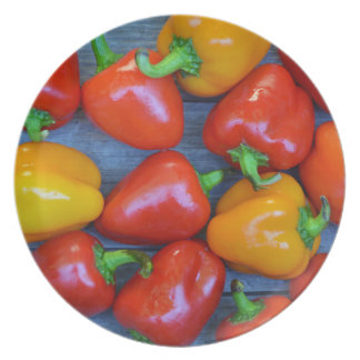 Colorful peppers melamine plate