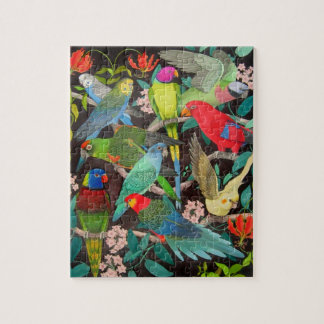 Colorful Pet Parrots Puzzle