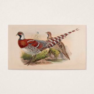 Colorful pheasant business card