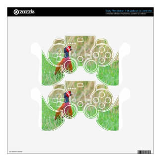 Colorful pheasant rooster upright in green meadow decal for PS3 controller