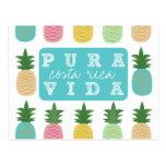 Colorful Pineapple Costa Rica Postcard