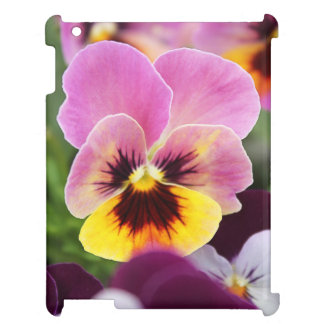 Colorful Pink and Yellow Pansy Flower iPad Case