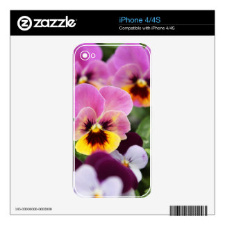 Colorful Pink and Yellow Pansy Flower Skins For iPhone 4S