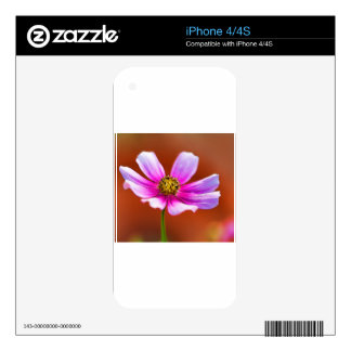 Colorful Pink Painted Cosmos Blossom Skins For iPhone 4S