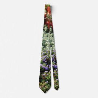 Colorful plants photographyTie Tie