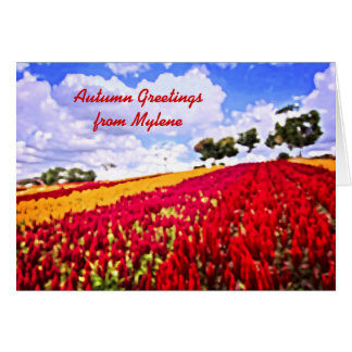Colorful Plumed Cockscomb Field Vibrant Flowers Card