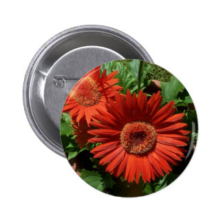 Colorful Potted Orange Flowers Pinback Button
