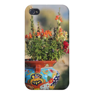Colorful Pottery with Flowers [Still Life] iPhone 4 Case