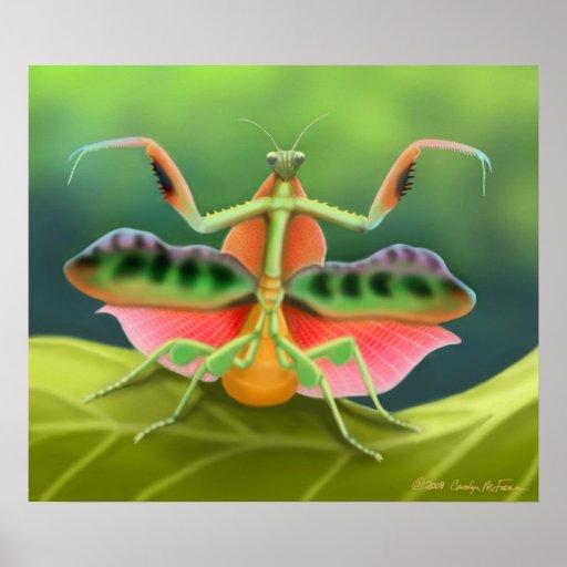 Colorful Praying Mantis Bug Poster