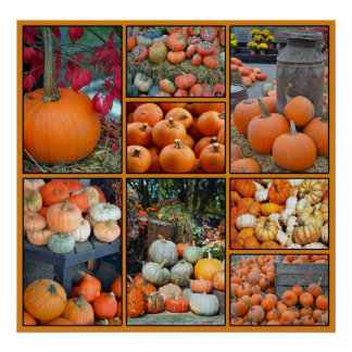 Colorful pumpkin collage poster