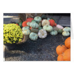 Colorful Pumpkins Card