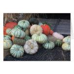 Colorful Pumpkins Card