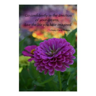 Colorful Purple flower orange zinnia quote Posters