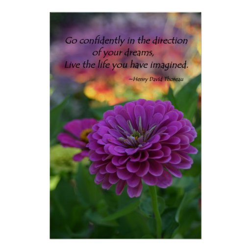 Colorful Purple zinnia flower inspirational quote Poster