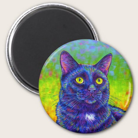 Colorful Rainbow Back Cat Magnet