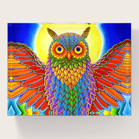Colorful Rainbow Owl Paperweight