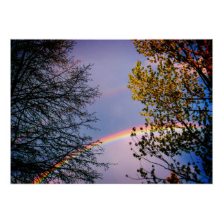 Colorful Rainbow&Trees Poster
