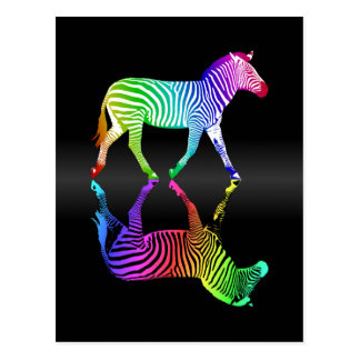 Colorful Rainbow Zebra Reflection Postcard